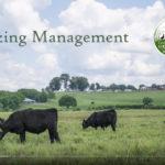 Grazing Management 101 video still