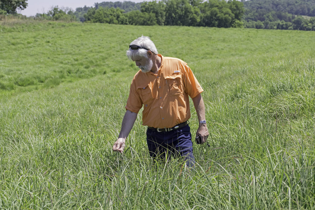 Professor Pat Keyser stands in a pasture of tall native grasses.